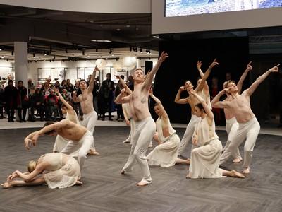 Domcenter Greifswald - BallettVorpommern