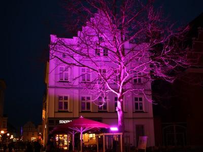 Greifswalder Lichtermeer