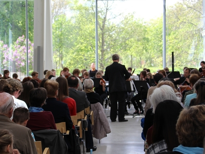 Musikschule Greifswald